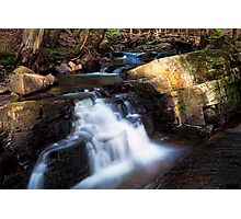 Down by the Brook Photographic Print