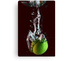 water + lemon 2 Canvas Print