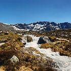 A Cool Mountain Stream by VoluntaryRanger