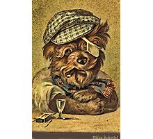 Greeting card - Vintage Dogs 4 Photographic Print