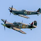 BBMF Hurricane IIc LF363 and Spitfire LF.XVIe TE311 by Colin Smedley