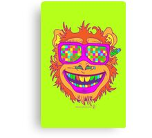 A funny monkey face colored glasses.  Canvas Print