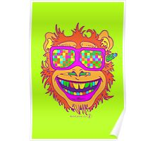 A funny monkey face colored glasses.  Poster