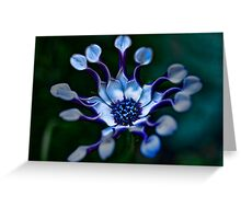 Gorgeous blue flower Greeting Card