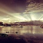 Sun Rays At Fleet Pond by martin bullimore