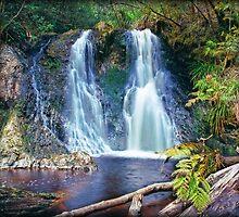 Hogarth falls Tasmania by leksele