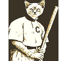 Baseball Cat Photographic Print