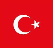 Smartphone Case - Flag of Turkey V by Mark Podger