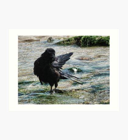 Among the Gulls where the River meets the Sea Art Print