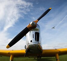 Miles Magister - classic RAF trainer by Tony Roddam