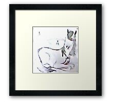 Horse Collection For True Heart Framed Print