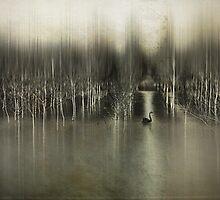 Black swan by DejaReve
