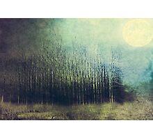 Silence Photographic Print