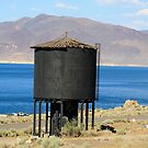 Old Water Tower at Pyramid Lake,Sutcliffe Nevada USA by Anthony & Nancy  Leake