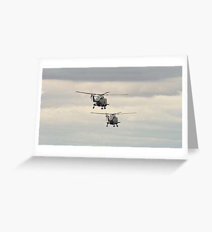 Navy Lynx pair Greeting Card