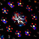 Stained Glass by Hena Tayeb