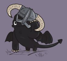How to train your Dragonborn Kids Clothes
