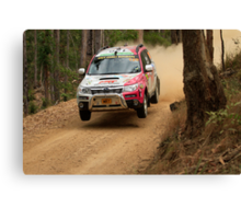 A Forester In The Forest Canvas Print