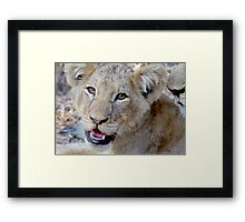 Happy Kitty Framed Print