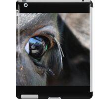Symbol of Freedom iPad Case/Skin