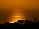 The Golden Glow of another day........! by Roy  Massicks