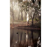 Ode to the Morning By Lorraine McCarthy Photographic Print