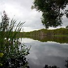 lake ainsworth grey clouds by GrowingWild