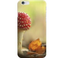 Fairy woodlands iPhone Case/Skin