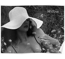 Willow- adv Poster