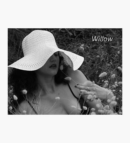 Willow- adv Photographic Print
