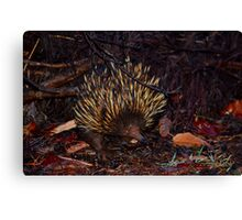 Is this my good side? Canvas Print