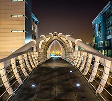 Pier Head Bridge Liverpool by Paul Madden
