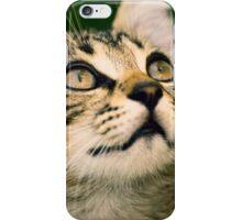 Cat eyes iPhone Case/Skin