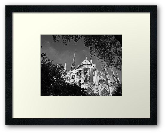 Notre Dame 2, Paris by Alex Cassels