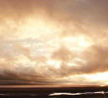 Burnham Pano by igotmeacanon