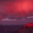 South Rim Grand Canyon at Sunset by Gary  Collins