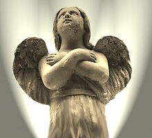 Guardian Angel by Neville Hawkins
