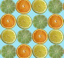 Citrus Fruits by gurso27