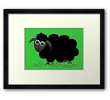 Solo Black Sheep Happy Framed Print