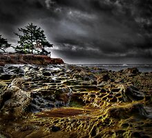 Just Another Bad Day ~ Cape Arago ~ by Charles & Patricia   Harkins ~ Picture Oregon