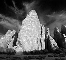 Sandstone Fins - Arches National Park (B/W) by Daniel Owens