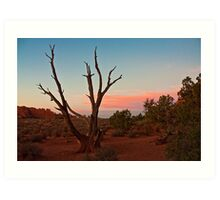 Desert Tree - Utah Art Print