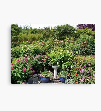 Butchart Gardens Rose Garden Canvas Print
