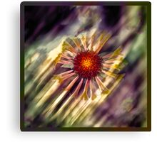 Radial Rays Canvas Print