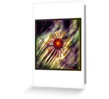 Radial Rays Greeting Card
