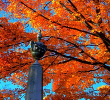 Mount Auburn: Into the Fire by Kerri  Crau