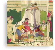Animal Collective - Feels Canvas Print