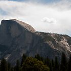 Half Dome Yosemite by Gary  Collins