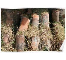 Roof Tiles and Grass Poster