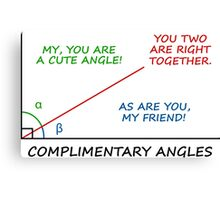Complimentary Angles Canvas Print